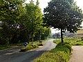 Landschaftsschutzgebiet Wäldchen bei Buer Melle Datei 4.jpg