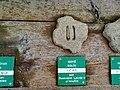 Le centre du parc national de Etsaut à mis en place un parcourt permetant de reconaitre les traces des animaux avec un affichage en braille à Etsaut vue 2.jpg