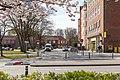 Lessingplatz Kiel, nördliche Straße.jpg