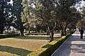 Lisboa 07 2013 - panoramio (35).jpg