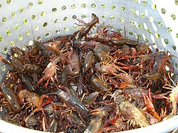 Marman a absceso wikipedia 39 s seafood boil as translated for J j fish chicken milwaukee wi