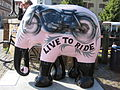 Live To Ride Elephant.JPG