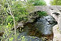 Llangenny bridge - geograph.org.uk - 1287624.jpg