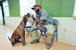 Local veterans group gets national exposure 141127-F-ZZ999-001.jpg