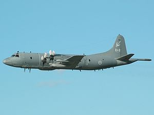 Lockheed CP-140 Aurora - An Aurora in 2004