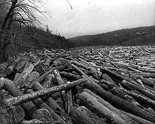 1886 St. Croix River log jam American logging incident