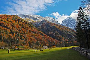 Logar Valley (Slovenia) - The Logar Valley in autumn