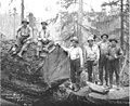 Logging crew, Lewis Mills and Timber Company camp no 4, ca 1922 (KINSEY 204).jpeg