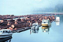 Logs rafted for towing in Alaska.jpg