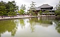 Long Exposure at the Todaiji Temple - Nara (41441113364).jpg