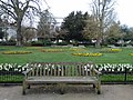 Long shot of the bench (OpenBenches 5509-1).jpg