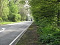 Looking south on the A283 - geograph.org.uk - 1260055.jpg