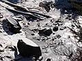 Lower Dead Horse Creek along Nisqually Vista Trail. Mid-November, 2014. (5b1db679e920498b941fcb05655e0333).JPG