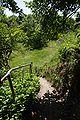 Lueneburg IMGP9645 wp.jpg
