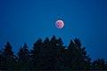 Lunar Eclipse 2018 SG 015 (28804398927).jpg