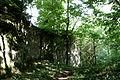 Mühltal - Burg Frankenstein 02 ies.jpg