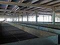 Mackwoods Labookellie Tea Centre (7).jpg