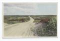Madaket Moors, Nantucket, Mass (NYPL b12647398-74665).tiff