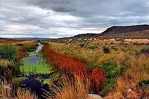 Malheur National Wildlife Refuge - Malheur National Wildlife Refuge waterway at Krumbo Reservoir Road