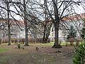 Manteuffelstraße 13-16a (Berlin-Tempelhof) Wohnhof.JPG