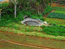 Organic fertilizer wikipedia for Uses of soil wikipedia