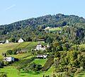 Marbach Schloss Weinstein 1.jpg
