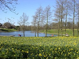 Marie Curie Field of Hope, Sefton Park - geograph.org.uk - 149919.jpg
