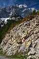 Massís del Pedraforca (33578343201).jpg