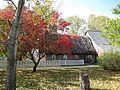 Mennonite Heritage Village, Steinbach - panoramio (12).jpg