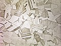 Microstructure of a stainless steel A961.jpg