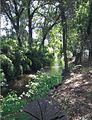 Mill Creek Visalia.jpg