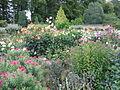 Miromesnil Garden 04.jpg
