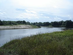 Moksha River on the border Sasovsky and Pitelinsky districts 02.jpg