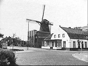 Maaskantje - Maaskantje in 1981