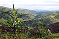 More hills... (5708194266).jpg