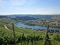 Moselle river near Piesport, Rhineland-Palatinate, Germany. - panoramio.jpg