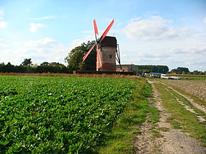 Templeuve-en-Pévèle - Windmill of Vertain