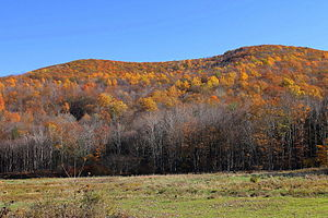 Noxen Township, Wyoming County, Pennsylvania - Mountain in Noxen Township, Wyoming County, Pennsylvania, in fall colors