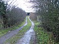 Muddy track leading to railway bridge - geograph.org.uk - 97675.jpg