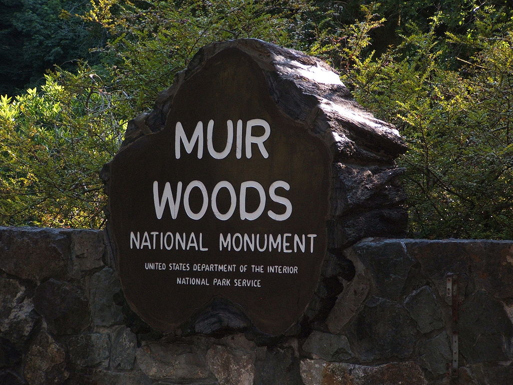 Parks monuments and forests endangered essay