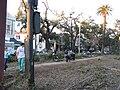 NOLATwister13Feb07CarrolltonNeutralGround5.jpg