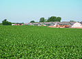 NRCSIA00023 - Iowa (2249)(NRCS Photo Gallery).jpg