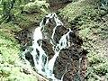 Na izvoru Neretvice - panoramio.jpg