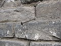 Nail on the wall - panoramio.jpg