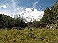 Nanga Parbat with meadow and cottage.jpg