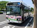 Nantan city bus 1.JPG