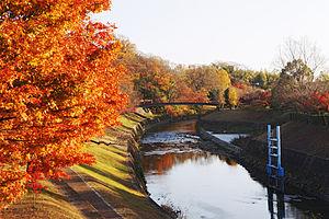 Ikaruga, Nara - Tatsuta River