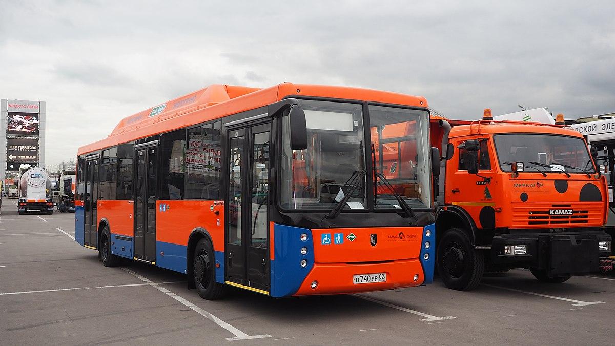 такой картинки камазов автобусов самом деле