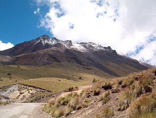 Zacatonal Montane grasslands and shrublands ecoregion of central Mexico