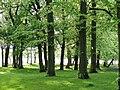 Newsham Park 018.jpg
